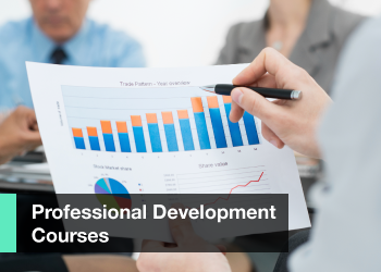 Professional Development Course